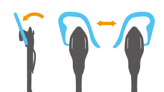 Ear hook which is made of right and left change