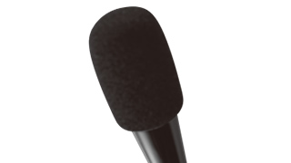 Microphone with windscreen