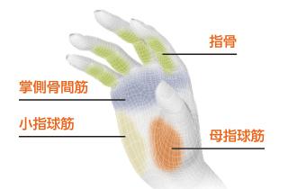 4点の骨格・筋肉にフィットするよう、最適な形状・角度で設計